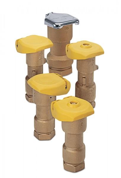 """1"""" Innengewinde BSP mit verschließbarem Thermoplastdeckel"""